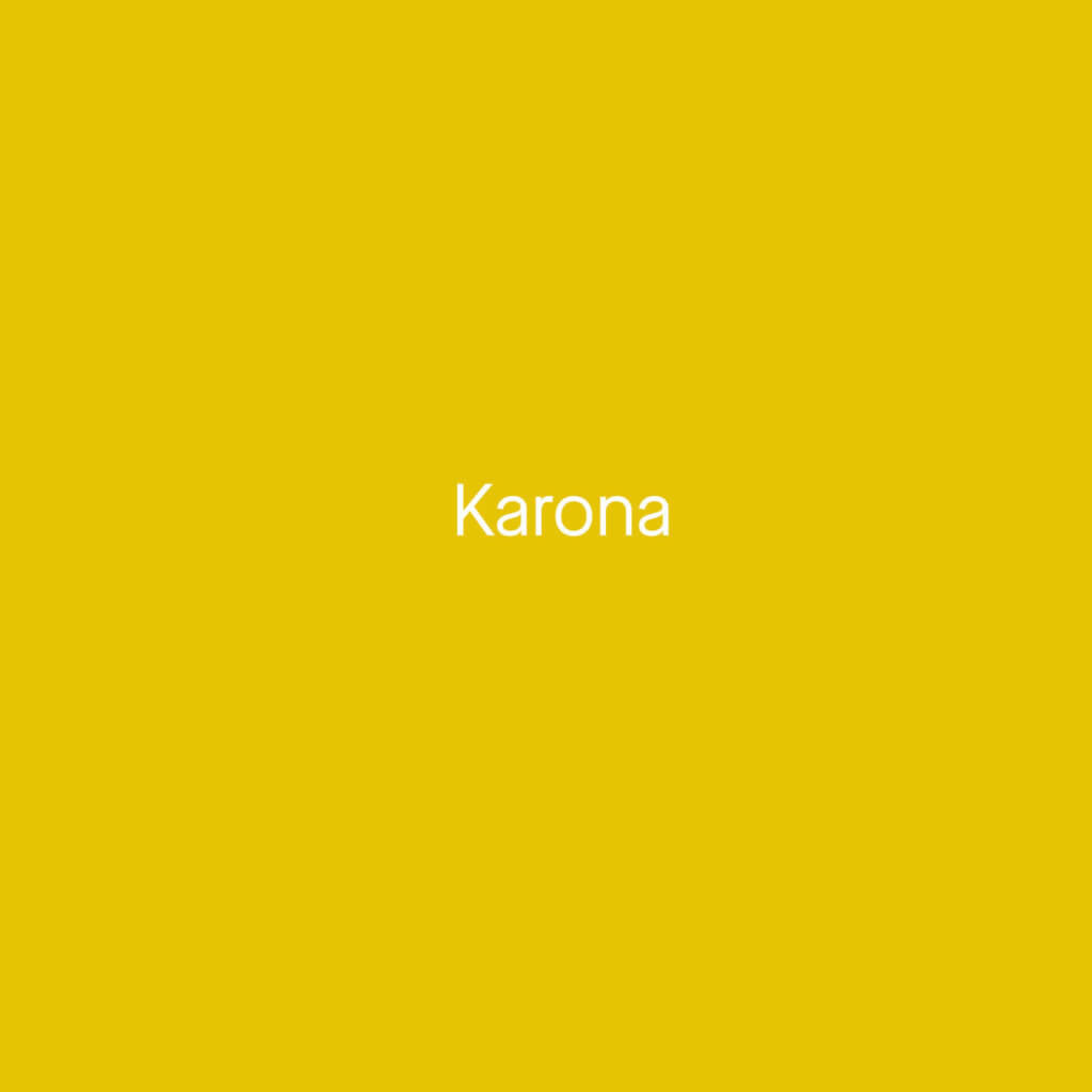 Karona Consulting Netcall Solution Provider